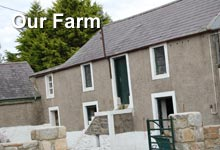 Moorfield Farm