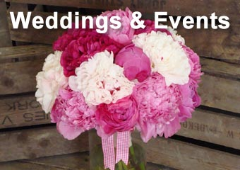 Flowers for Weddings and Events